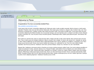 The (very) basic layout with most of the stock Plone viewlets removed.